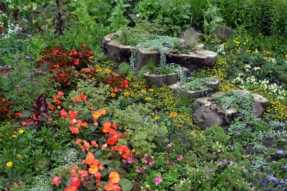 garden-1477835_1280-1200x800.jpg